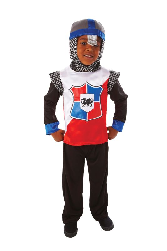 Boys Knight Of The Realm Fancy Dress Costume
