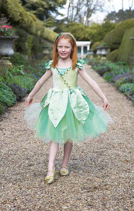 Girls Forest Leaf Fairy Fancy Dress Costume  Thumbnail 2