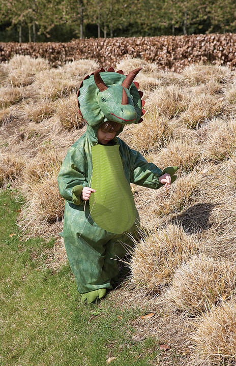 Childs Triceratops Fancy Dress Costume  Thumbnail 1