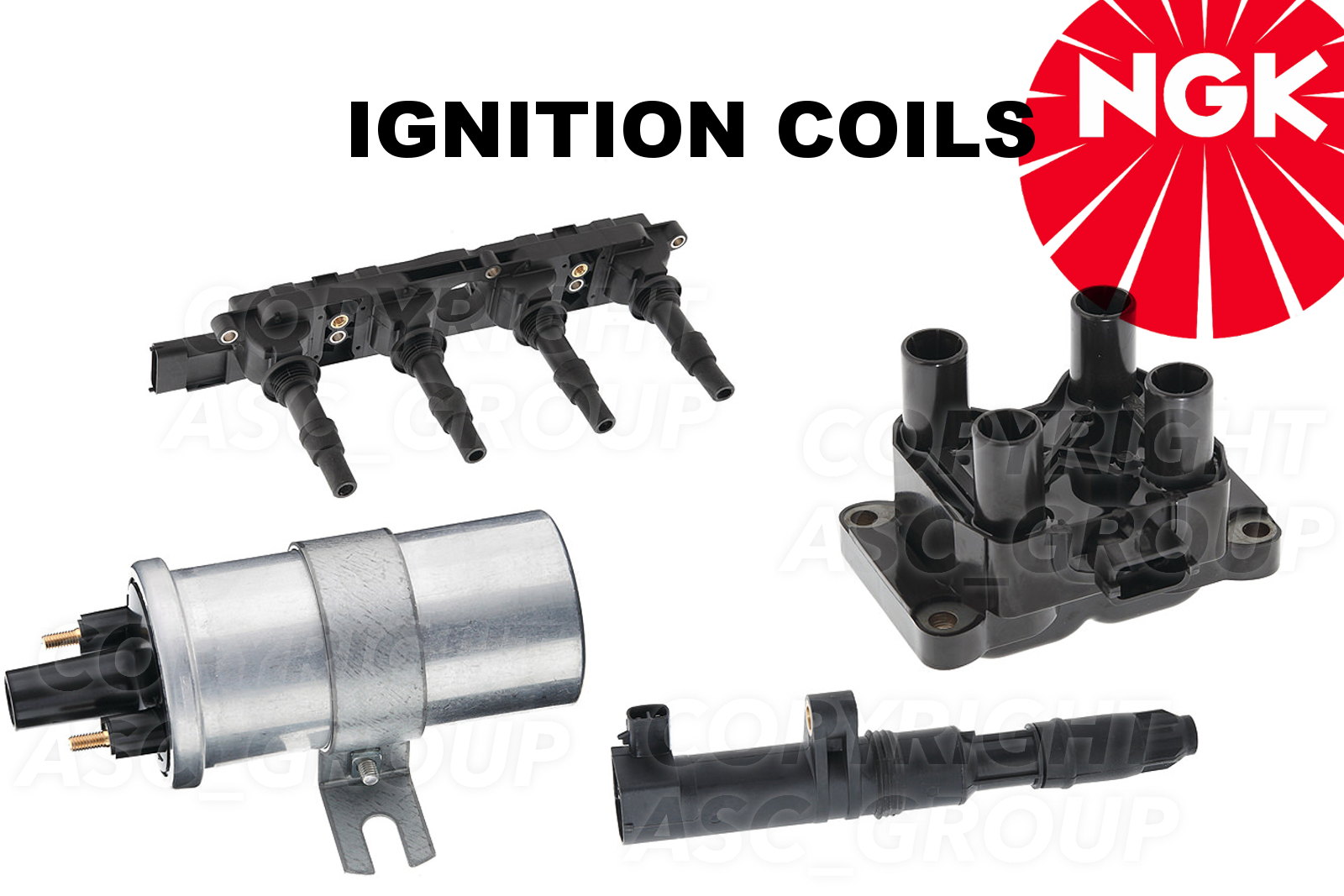 NGK 48001 Ignition and Heating System
