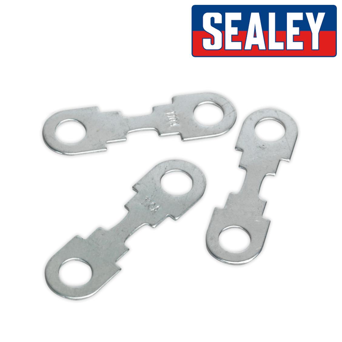 Sealey START360.F Fuse 110Amp for START360 /& START560