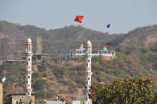 Makar Sankranti (The Kite Festival)
