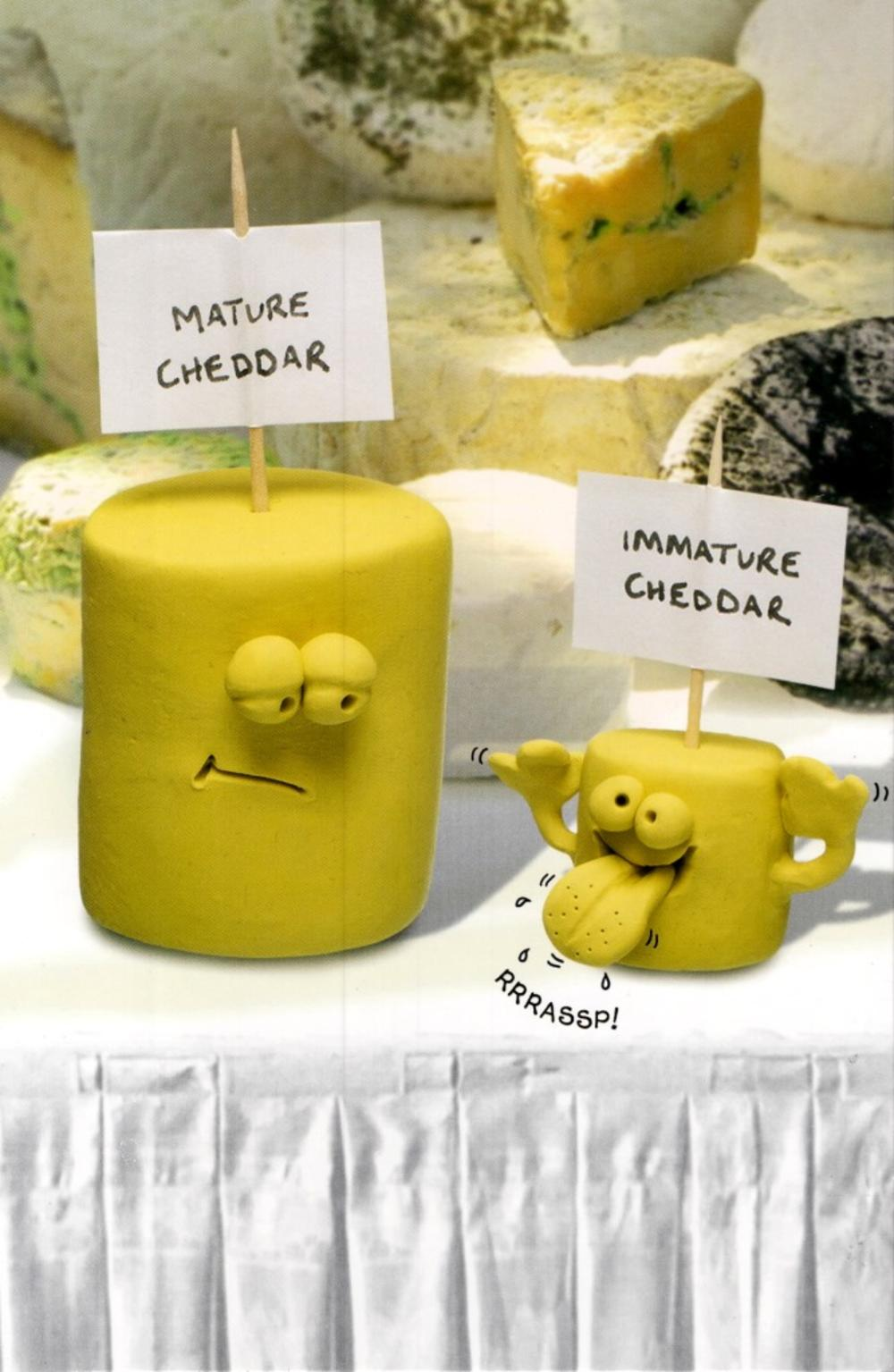 Funny Mature Cheese Birthday Card