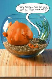 Funny Goldfish Bowl Birthday Card