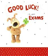 Boofle Good Luck In Your Exams Greeting Card