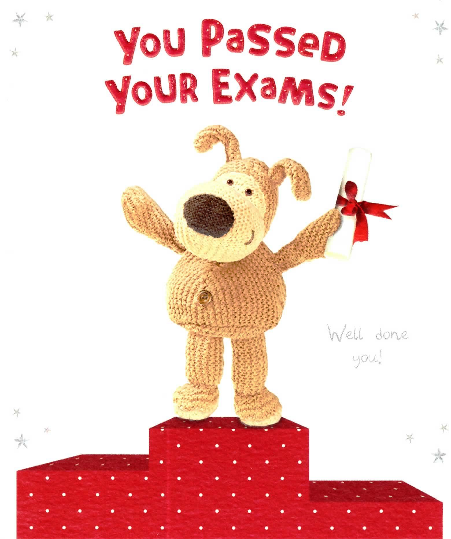 Boofle You Passed Your Exams Congratulations Card Official Boofle