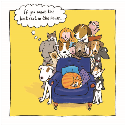 Cat Best Seat In House Humour Greeting Card Blank Inside