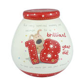 Boofle Brilliant 18 Year Old Money Pot