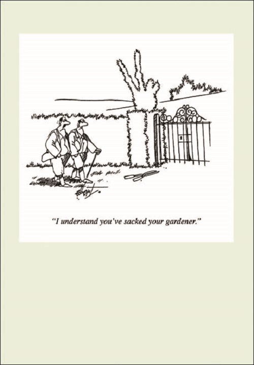 Sentinel Punch Gardening Cartoon Humour Greeting Card Funny Range Cards Blank Inside