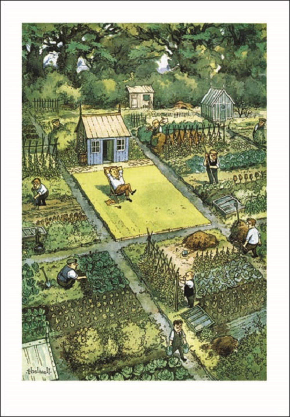 Punch Allotments Cartoon Humour Greeting Card