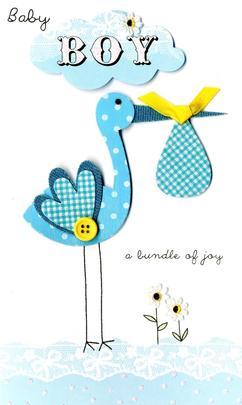 New Baby Boy Stork Luxury Champagne Greeting Card
