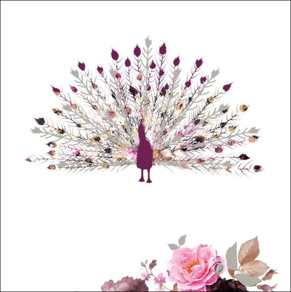 Peacock Stephanie Rose Square Art Greeting Card Blank Inside
