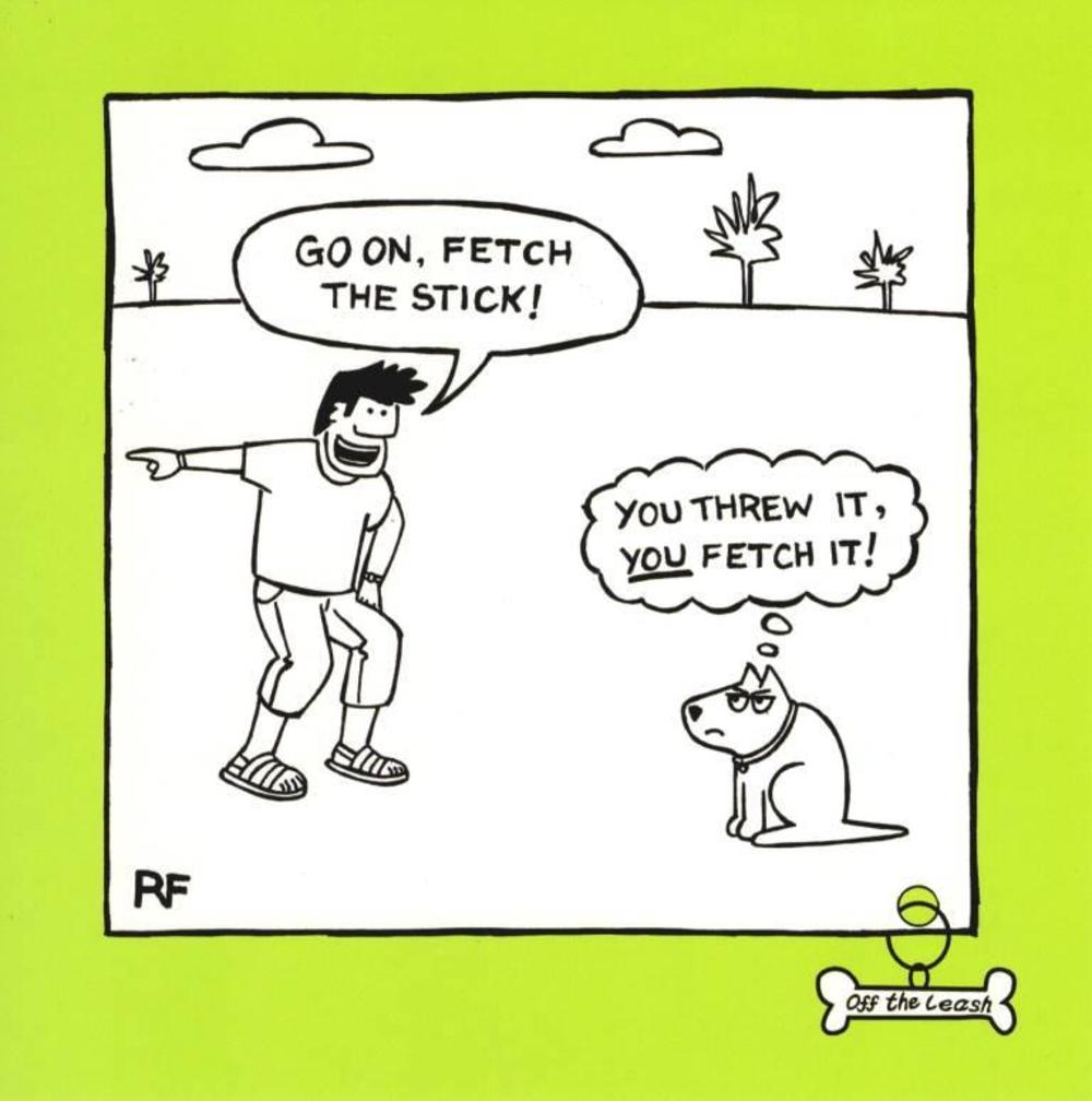 Fetch Dog Square Cartoon Humour Greeting Card