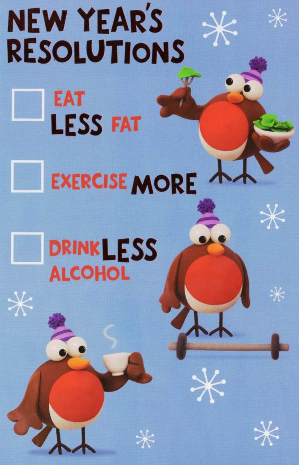 New Year's Resolutions Funny Happ New Year Card