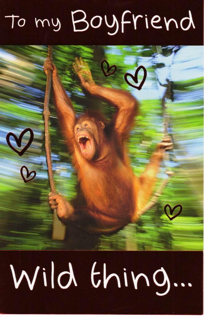 To My Boyfriend Wild Thing Happy Valentines Day Card – Valentines Card for My Boyfriend
