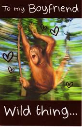 To My Boyfriend Wild Thing  Happy Valentine's Day Card