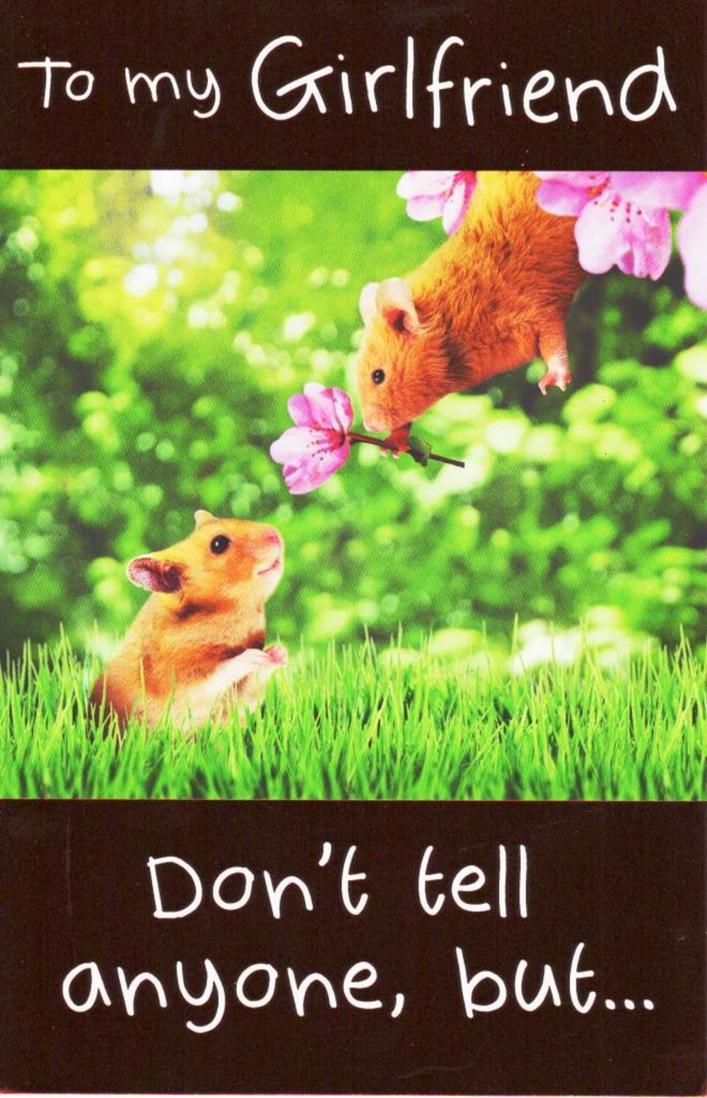 To My Girlfriend Cute Hamster Valentine's Day Card