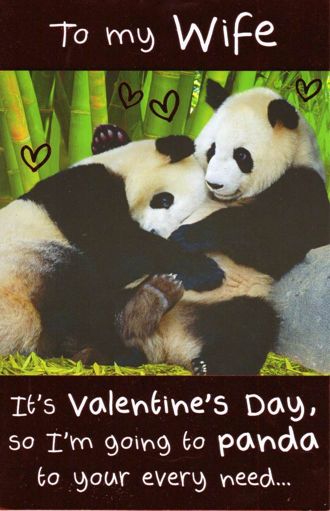 To My Wife Funny Panda Valentines Day Card Cute Valentine
