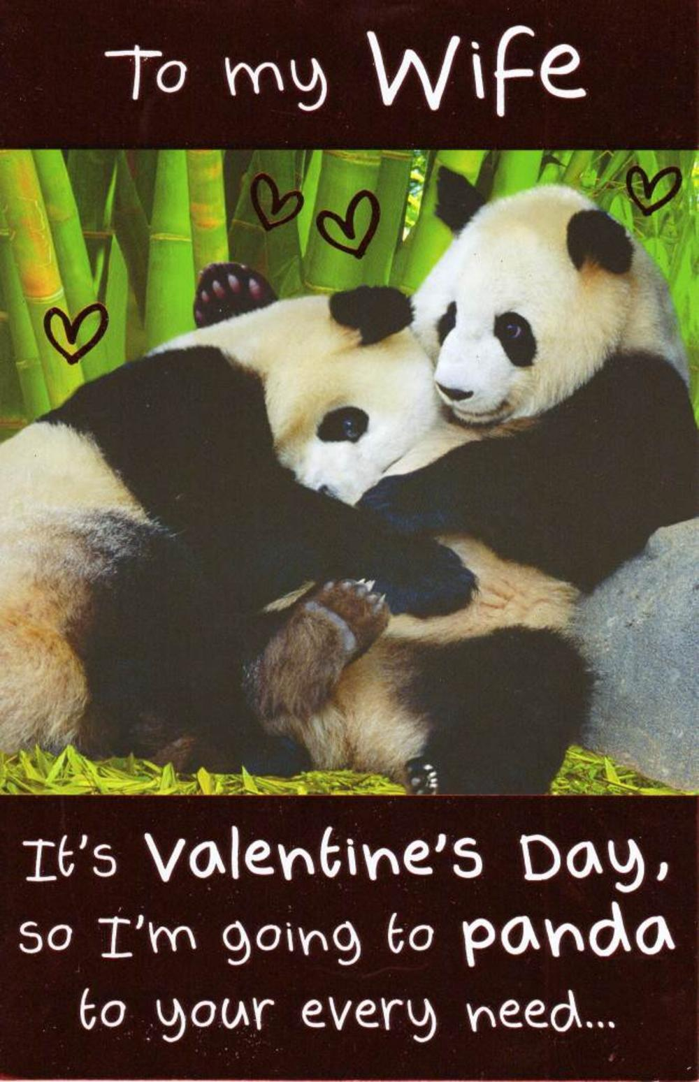 To My Wife Funny Panda Valentines Day Card Cards – Wife Valentine Card