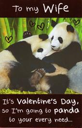 To My Wife Funny Panda Valentine's Day Card