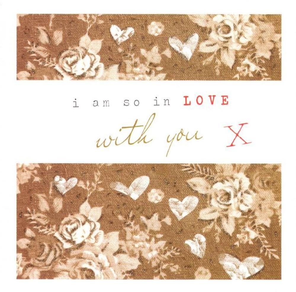 Stephanie Rose So In Love With You Valentines Day Greeting Card