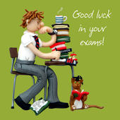 Good Luck In Your Exams Greeting Card One Lump or Two