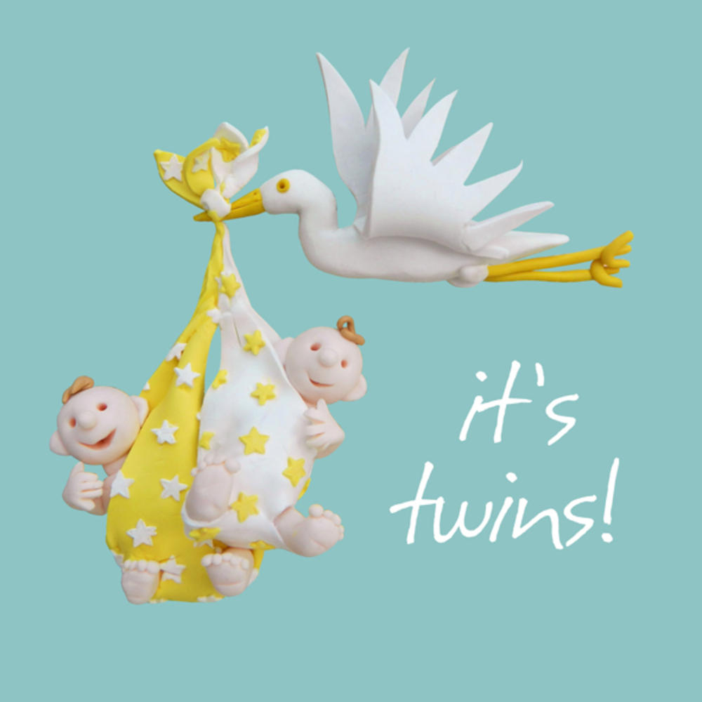 It's Twins New Babies Greeting Card One Lump or Two