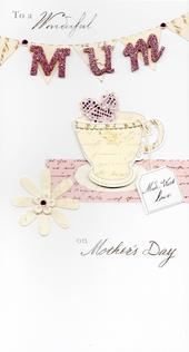 Wonderful Mum Champagne Mother's Day Card