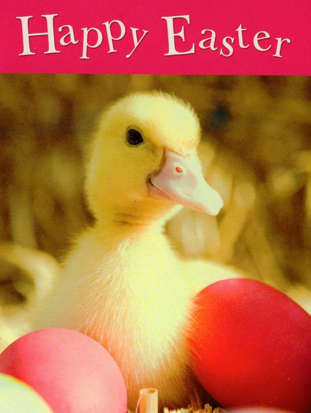Happy Easter Cute Duckling Small Greeting Card
