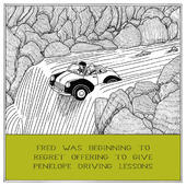 Driving Lessons Funny Fred Birthday Card