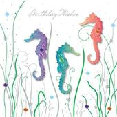 Handmade Sea Horses Birthday Greeting Card By Talking Pictures