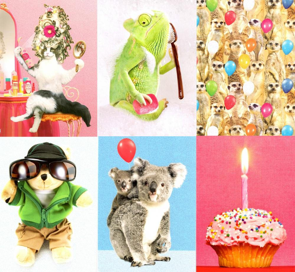 Assorted Pack Of 6 Photo Birthday Greeting Cards Cards Love Kates