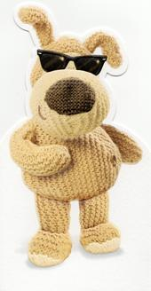 Boofle Have A Cool Birthday Greeting Card