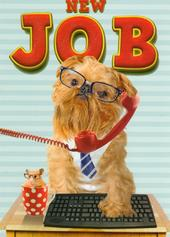 New Job Good Luck Greeting Card
