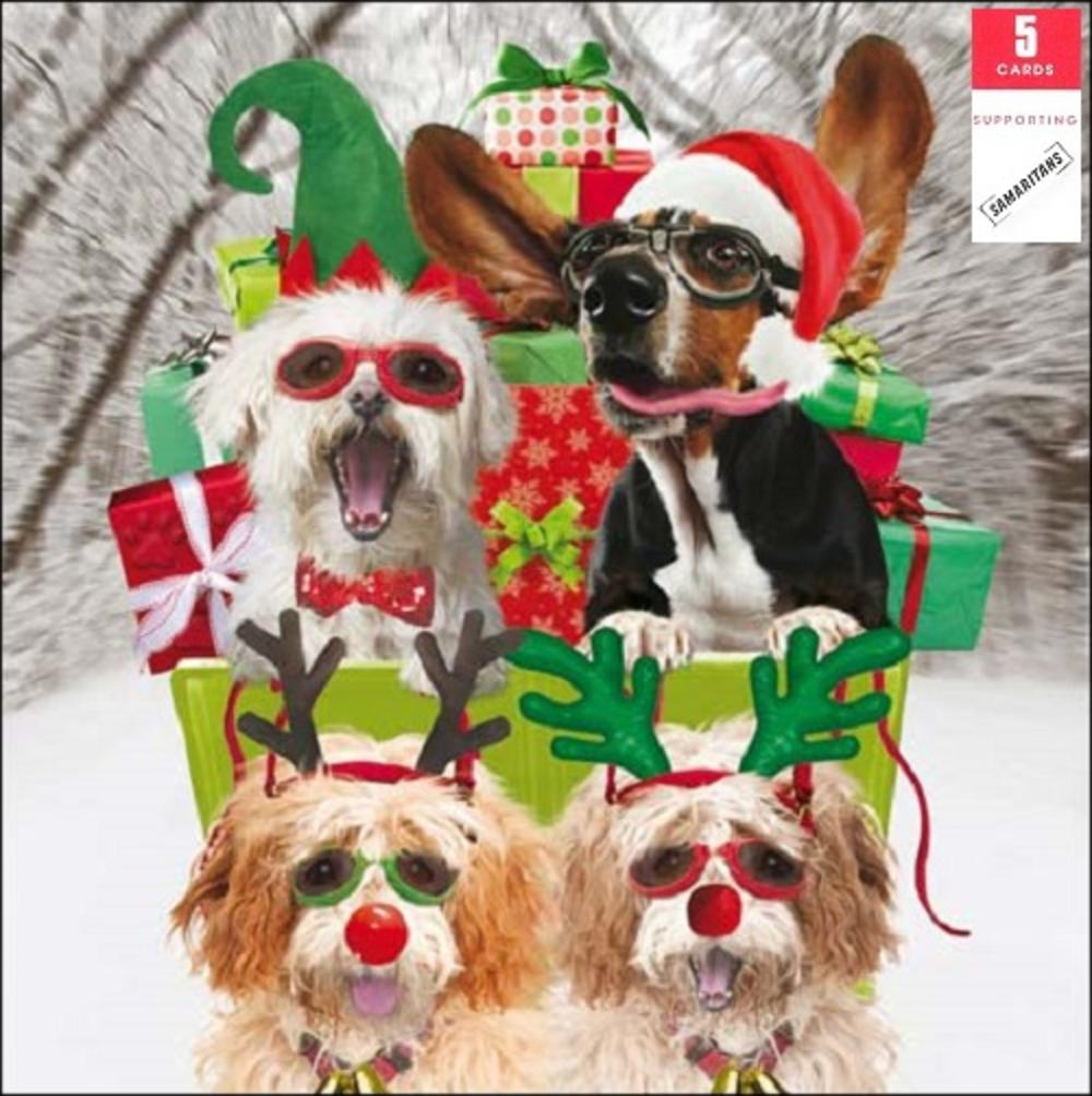 Pack of 5 Christmassy Dogs Samaritans Charity Christmas Cards