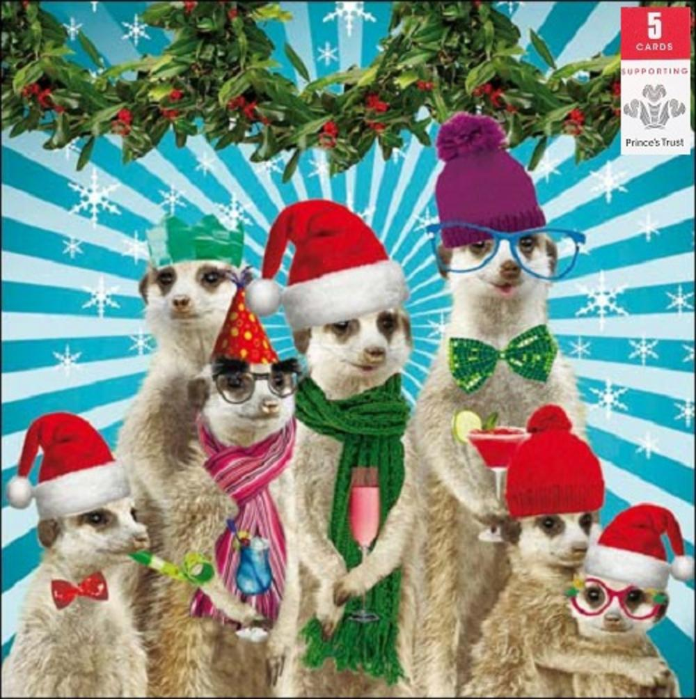 Pack Of 5 Meerkat Prince S Trust Charity Christmas Cards