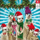 Pack of 5 Meerkat Prince's Trust Charity Christmas Cards