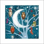 Pack of 5 Owls Marie Curie Cancer Care Charity Christmas Cards