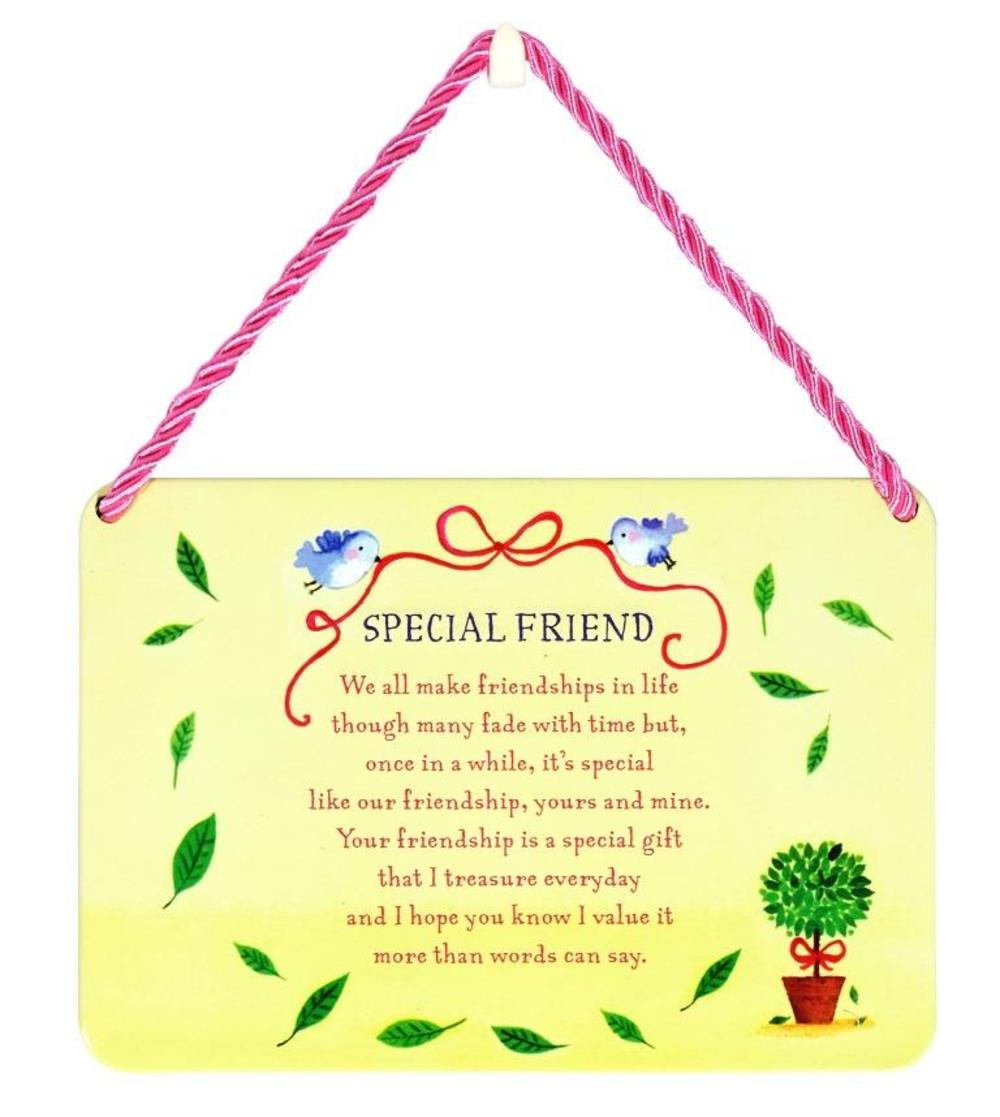 Special Friend Tin Hanging Plaque