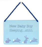 New Baby Boy Sleeping Tin Hanging Plaque