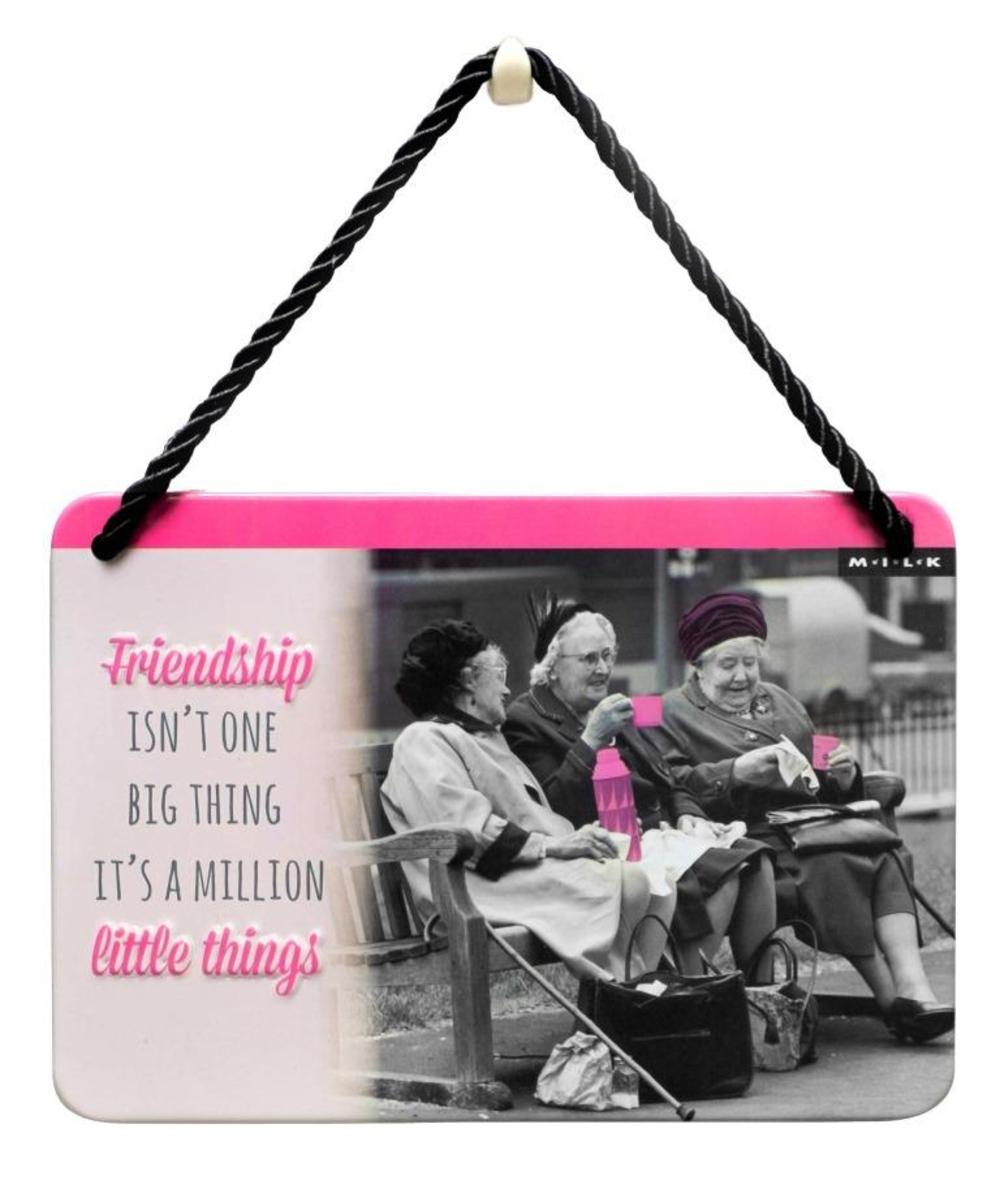 Friendship Isn't One Big Thing It's A Million Tin Hanging Plaque