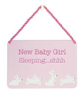 New Baby Girl Sleeping Tin Hanging Plaque