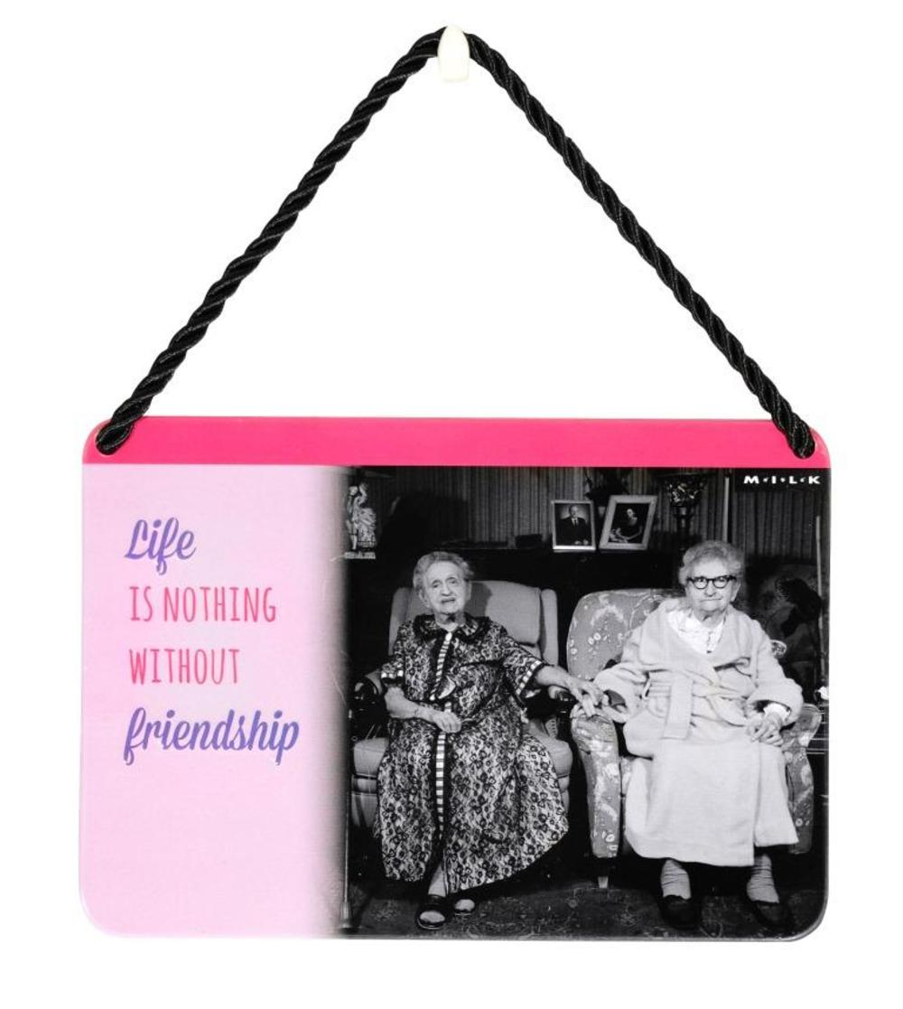Life Is Nothing Without Friendship Tin Hanging Plaque Gift Idea