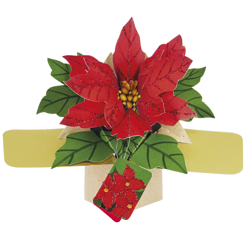 Christmas Pop Up Cards.Poinsettias Christmas Pop Up Greeting Card