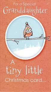 Special Granddaughter Big Hug Christmas Card