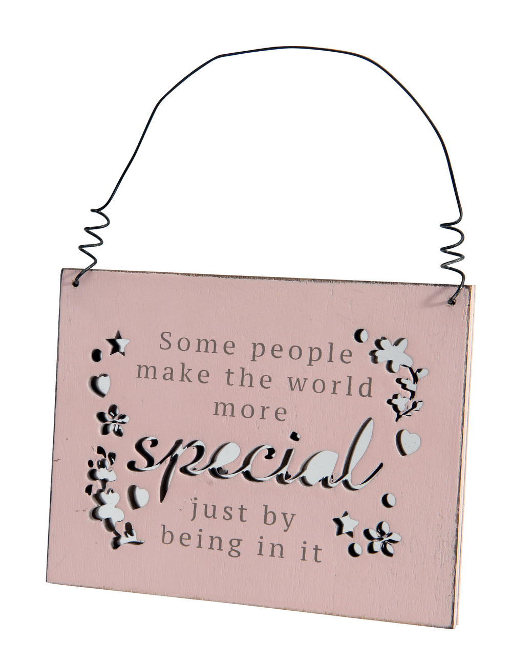 Make The World More Special Hanging Plaque Gift
