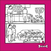 Quick, Guys The Sofa Cartoon Dog Humour Greeting Card