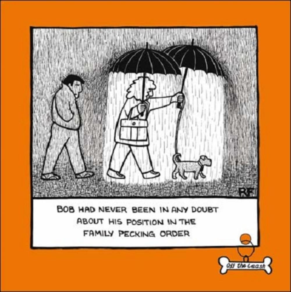Pecking Order Cartoon Dog Humour Greeting Card