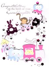 Congratulations Birth New Baby Granddaughter Greeting Card