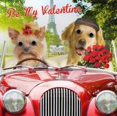 Be My Valentine Dogs In Car Valentine's Day Greeting Card